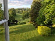 engelsk trädgård