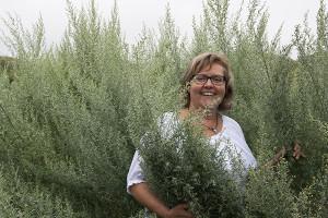 Eva Olsson på Österlenkryddor är en fantastisk inspirationskälla bl.a när det gäller att krydda sin egen snaps.