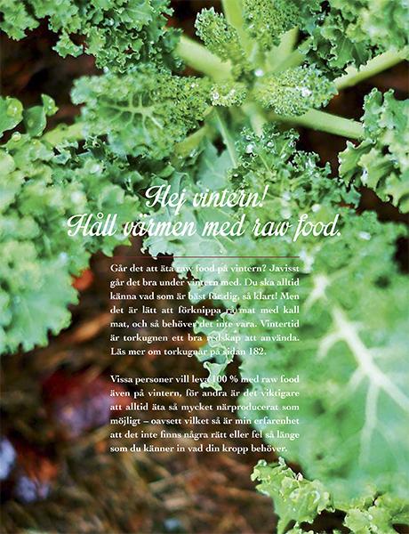 Mitt_nya_Raw_food_kok_tryck.pdf-82